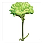 GREEN-CARNATION_NEW.png Square Car Magnet 3