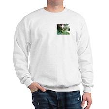 Sunbeam of Hope Sweatshirt