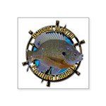 Bluegill Master Square Sticker 3