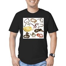 Funny Burmese python T