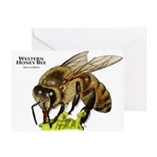 Western Honey Bee Greeting Card
