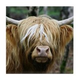 Highland Cow Tile Coaster