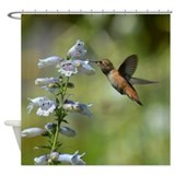 Hummingbird 4851 - Shower Curtain
