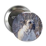 "Canadian Boerboel 2.25"" Button"