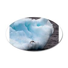 Adelie Penguin on Iceberg Wall Decal