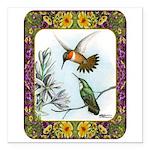 "Rufous Hummingbirds Square Car Magnet 3"" x 3&"