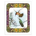 Rufous Hummingbirds Small Poster
