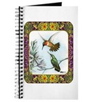 Rufous Hummingbirds Journal
