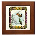 Rufous Hummingbirds Framed Tile