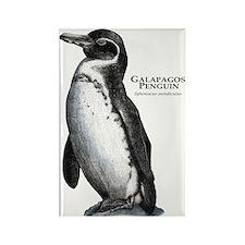 Galapagos Penguin Rectangle Magnet
