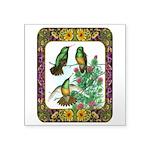"Buff Bellied Hummingbirds Square Sticker 3"" x"