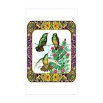 Buff Bellied Hummingbirds Sticker (Rectangle 50 pk