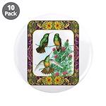 "Buff Bellied Hummingbirds 3.5"" Button (10 pac"