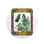 "Buff Bellied Hummingbirds 3.5"" Button"