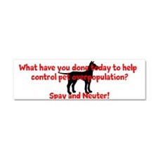 Spay and Neuter Car Magnet