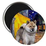 Cafe - Shiba Inu (std) Magnet