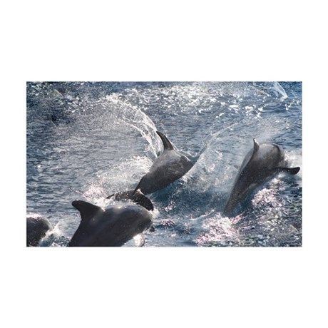 Bottlenose Dolphins 2 35x21 Wall Decal