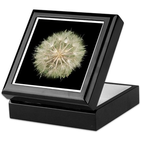 Milkweed Seeds Keepsake Box