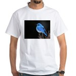 Mountain Blue Bird White T-Shirt