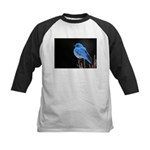 Mountain Blue Bird Kids Baseball Jersey