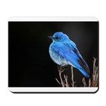 Mountain Blue Bird Mousepad