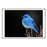 Mountain Blue Bird Banner