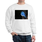 Mountain Blue Bird Sweatshirt