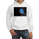 Mountain Blue Bird Hooded Sweatshirt