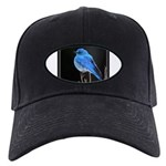 Mountain Blue Bird Black Cap