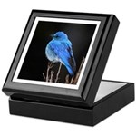 Mountain Blue Bird Keepsake Box