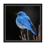 Mountain Blue Bird Tile Coaster