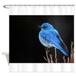 Mountain Blue Bird Shower Curtain