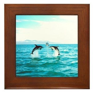 3 Jumping Dolphins Square Baby Blue Border Framed