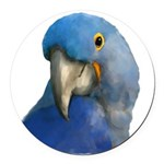 Hyacinth Macaw Round Car Magnet