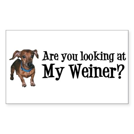 Looking at my weiner? Sticker (Rectangle)