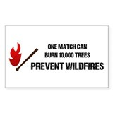 Wildfire Decal