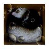 Ferret Tile Coaster