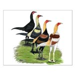 Modern Game Roosters Small Poster