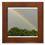RAINBOW MAGIC™ Framed Tile