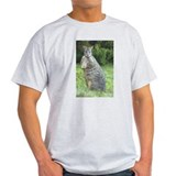 Tasmanian Pademelon Poster Ash Grey T-Shirt