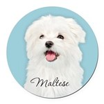 Cute Maltese Round Car Magnet
