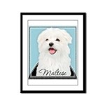 Cute Maltese Framed Panel Print