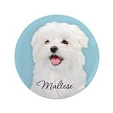 "Cute Maltese 3.5"" Button (100 pack)"