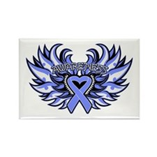 Stomach Cancer Heart Wings Rectangle Magnet