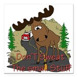 moose fun Square Car Magnet 3