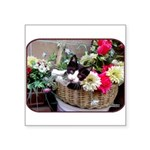 "Kitten in a Basket Square Sticker 3"" x 3&quot"