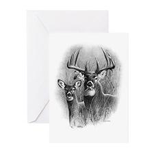 Big Buck Greeting Cards (Pk of 20)