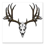 mule deer skull 14 left side.png Square Car Magnet