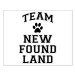 Team Newfoundland Small Poster