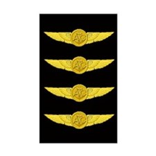 Aircrew WING Decal